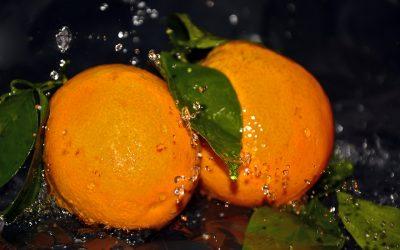 Valencia's Oranges